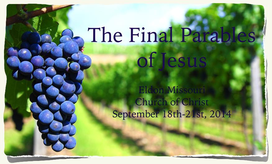 Grapes Vineyard Final